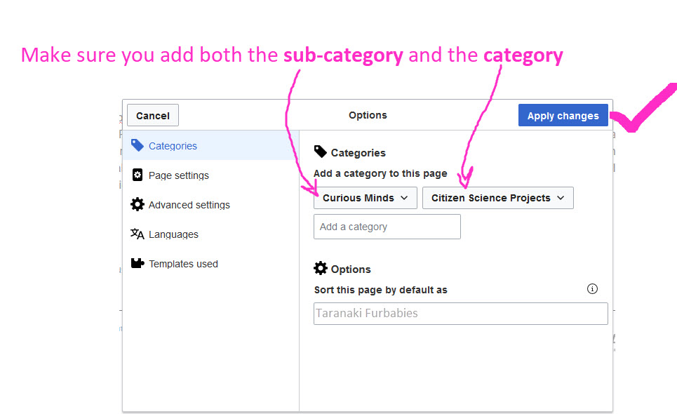 add page 4 categories.jpg