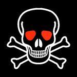 Skull and crossbones1.jpg